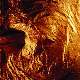 BRL - Bronze Leaf