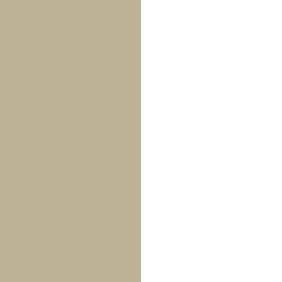GSW - Gold Silver/White