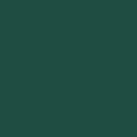 SLG - Silk Lacquer Green