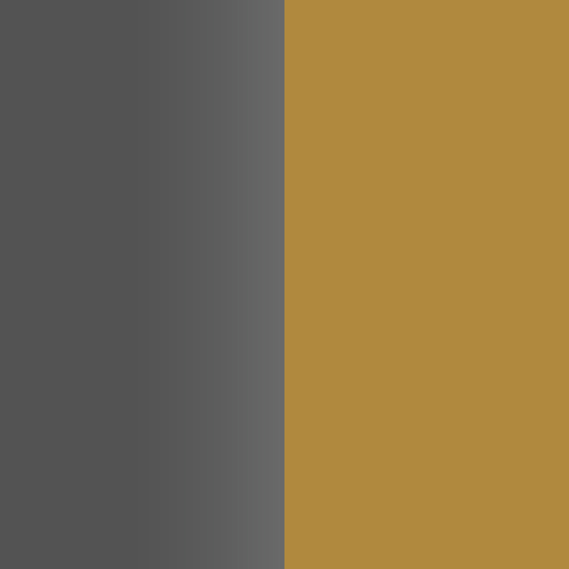 MGG - Marengo Gray and Gold Lacquer