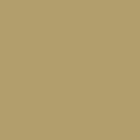 SGD - Satin Gold