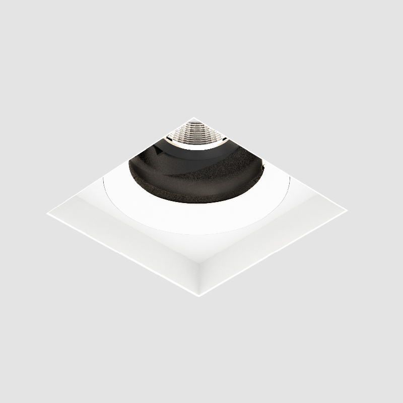 Bioniq by Prolicht – 4 3/16″ x 5 1/4″ Trimless, Downlight offers LED lighting solutions | Zaneen Architectural