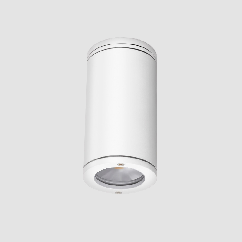 Emme by Side – 4 1/8″ x 8 7/16″ Surface, Downlight offers high performance and quality material | Zaneen Exterior
