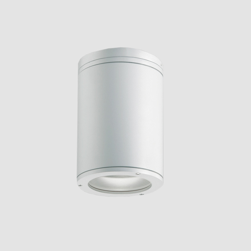 Emme by Side – 6 7/8″ x 10 13/16″ Surface, Downlight offers high performance and quality material | Zaneen Exterior